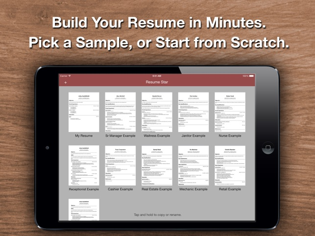 Resume Star Pro CV Maker and Resume Designer with PDF Output to