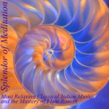 Free Download Splendor of Meditation Shrotasvini (Relaxing Into the Music of the Breath) [feat. V.K. Raman] Mp3