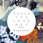 Could You Love Me? (Remixes) - EP, Black Saint