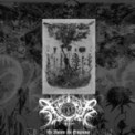 Free Download Xasthur Apparitional Void of Failure Mp3