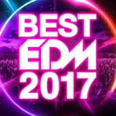 Various Artists - BEST EDM 2017 アートワーク