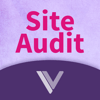 Ignite Vision Ltd - Site Audit アートワーク