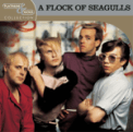 Free Download A Flock of Seagulls I Ran Mp3