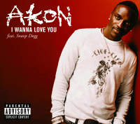 I Wanna Love You Akon featuring Snoop Dogg
