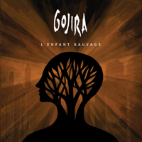Explosia GOJIRA MP3