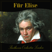 Für Elise Beethoven Orchestra London
