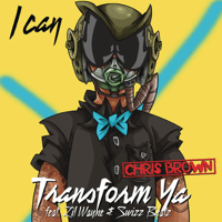 I Can Transform Ya (feat. Lil Wayne & Swizz Beatz) Chris Brown