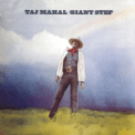 Free Download Taj Mahal Give Your Woman What She Wants (From the Motion Picture