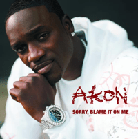 Sorry, Blame It On Me (Main) Akon