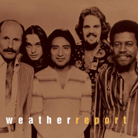 Birdland Weather Report MP3
