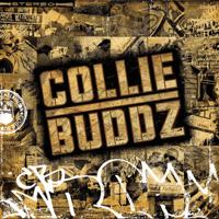 Come Around Collie Buddz