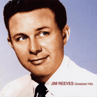 I Love You Because Jim Reeves MP3