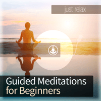 Timeout: A Quick Guided Relaxation to Destress (Bonus Track) Guided Meditation