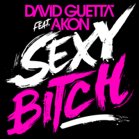 Sexy Bitch (Afrojack Remix) [feat. Akon] David Guetta MP3