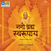 Shiv Tandav Bharat Balavalli