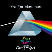 Shine On You Crazy Diamond The Chill-Out Orchestra song