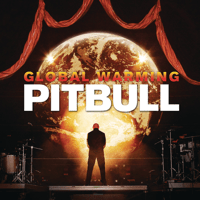 Hope We Meet Again (feat. Chris Brown) Pitbull