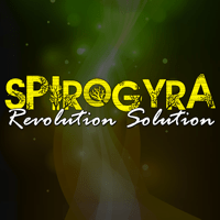 Call Sign Spirogyra