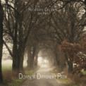 Free Download Richard Dillon Dancing On the Light Mp3