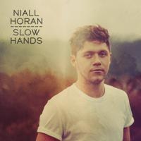 Slow Hands Niall Horan
