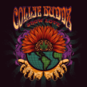 Free Download Collie Buddz Show Love Mp3