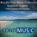 Free Download ContiMusic A Spies Life Mp3
