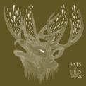 Free Download Bats Gamma Ray Burst (Second Date) Mp3