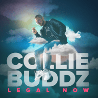 Legal Now Collie Buddz