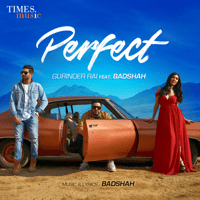 Perfect (feat. Badshah) Gurinder Rai MP3