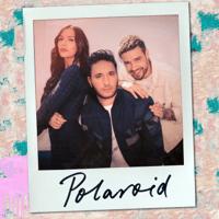 Polaroid Jonas Blue, Liam Payne & Lennon Stella MP3