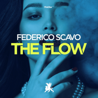 The Flow Federico Scavo