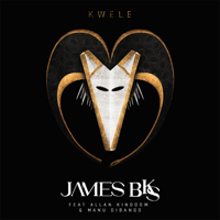 Kwele (feat. Allan Kingdom & Manu Diabango) James BKS
