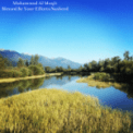 Free Download Muhammad Al Muqit Blessed Be Your Efforts Nasheed Mp3