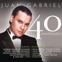 Ya Lo Se Que Tu Te Vas Juan Gabriel