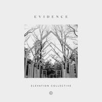 Do It Again (feat. Travis Greene & Kierra Sheard) Elevation Collective MP3