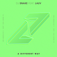 A Different Way (feat. Lauv) DJ Snake song