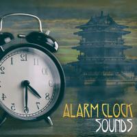 Dreaming Angam MP3