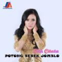 Free Download Cita Citata Potong Bebek Jomblo Mp3