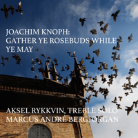 Gather Ye Rosebuds While Ye May (feat. Aksel Rykkvin) Joachim Knoph