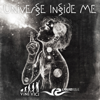 Universe Inside Me Liquid Soul & Vini Vici MP3