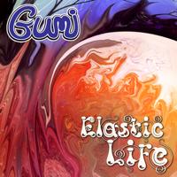 Punjab (Gumi Remix) Karunesh MP3