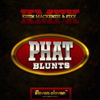 Phat Blunts DJ Fixx song