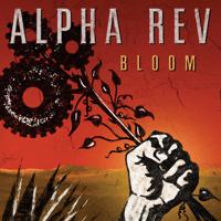 When You Gonna Run Alpha Rev MP3