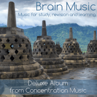 Mind & Brain Concentration Music