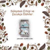 Dön Süleyman Erkişi
