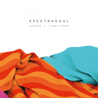 I Don't Mind SpectraSoul