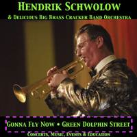 Gonna Fly Now Hendrik Schwolow's DeliciousBigBrassCrackerBandOrchestra song