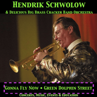 Gonna Fly Now Hendrik Schwolow's DeliciousBigBrassCrackerBandOrchestra MP3