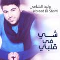 Free Download Waleed Al Shami Shay Fee Galbi Mp3