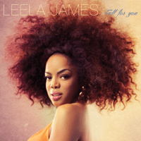 Fall for You Leela James song